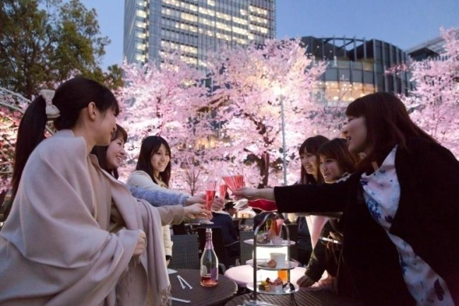 cherry-blossom-viewing1