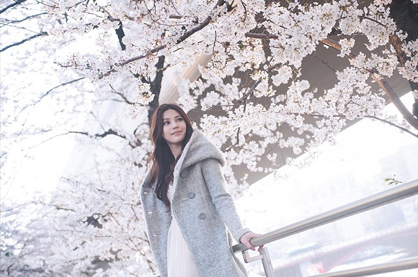 cherry-blossom-viewing4