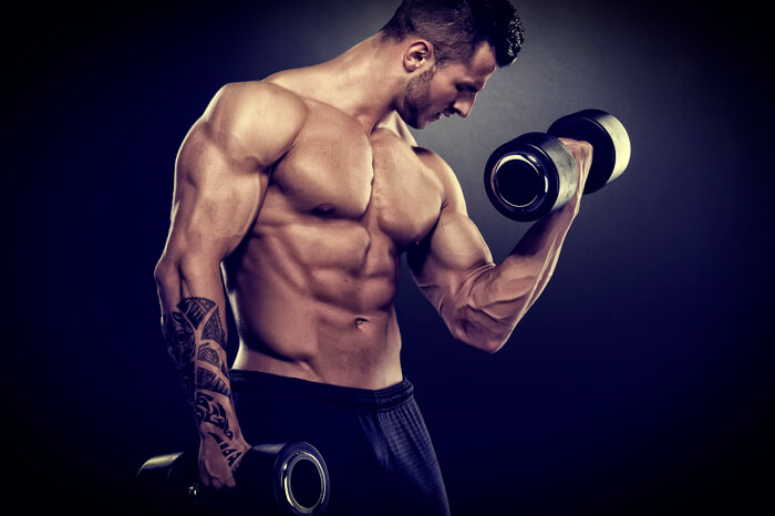 muscular-quality2
